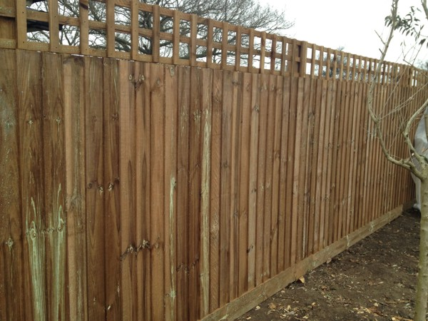 Close Boarded Garden Fencing with Trellis Chelmsford Essex CM1