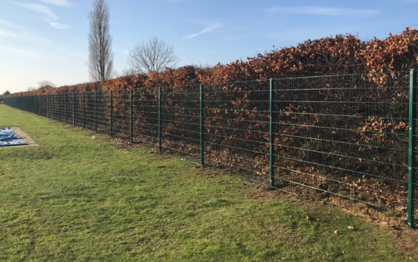 656 Mesh Panel School Fencing Essex