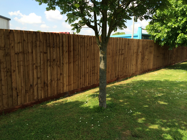 Close Boarded Fencing Quote